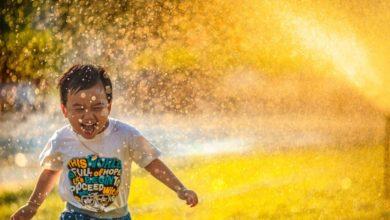 Photo of Как стать счастливым: 10 подсказок от Экхарта Толле