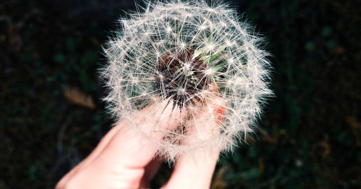 7 законов исполнения желаний