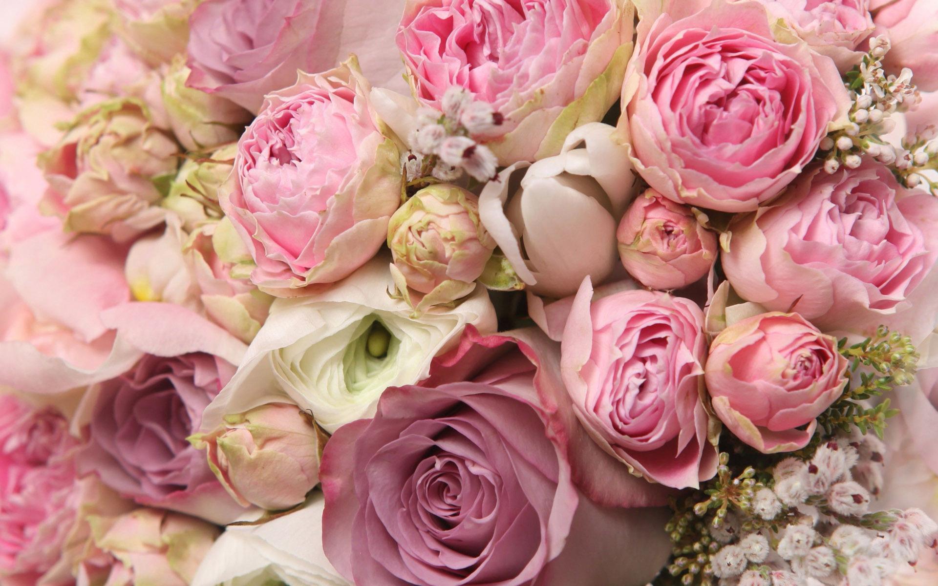 место четкие картинки с цветами поможет другим