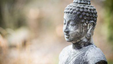Photo of 8 уроков Будды