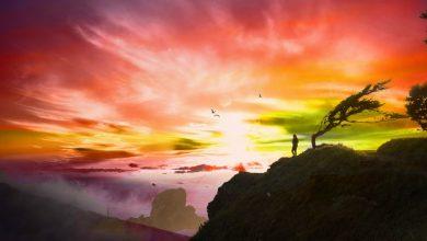 Куда приводят сны: ваше подсознание и сексуальная жизнь