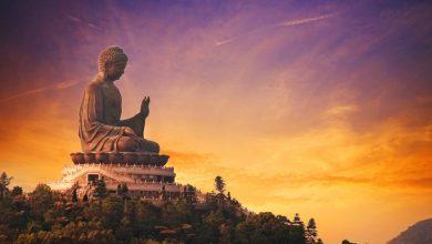 Photo of Учение Будды: Четыре благородные истины