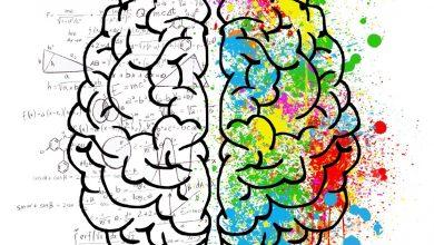 Photo of 5 способов улучшить подвижный интеллект