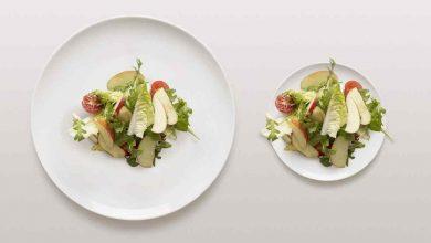 Маленькая тарелка как способ похудения — миф или реальность?