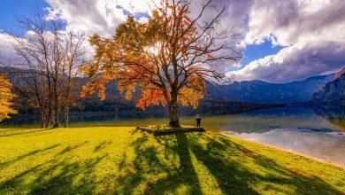 Photo of Твоя счастливая осень: 9 шагов к обновлению