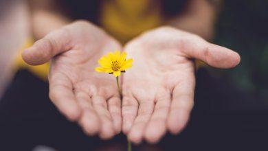Photo of Брене Браун: Как полюбить себя таким, какой ты есть