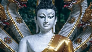 Притча «Прощение Будды»