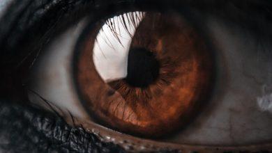 Почему люди с карими глазами — самые лучшие
