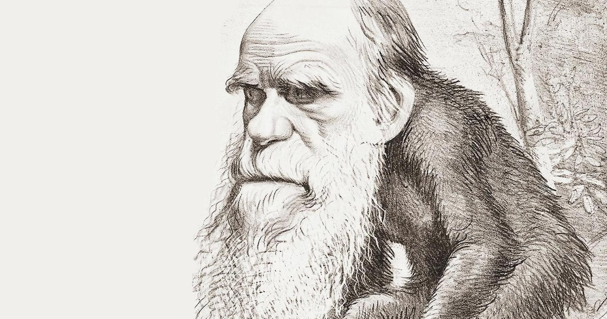 Мифы об эволюции человека
