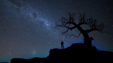 Истинный смысл жизни, исходя из вашего знака Зодиака