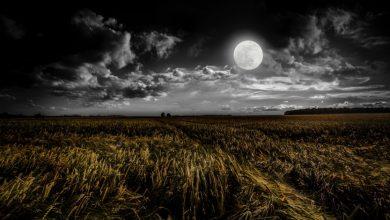 4 лучшие практики на убывающую Луну