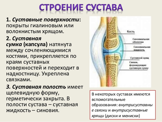 Хрустят суставы по всему телу: в чем причина и что делать