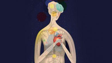 Луиза Хэй: Таблица психологических причин болезней