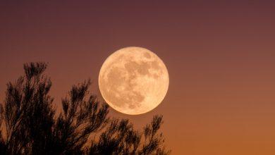 Photo of Новолуние 7 декабря — это ваш шанс исполнить мечту!