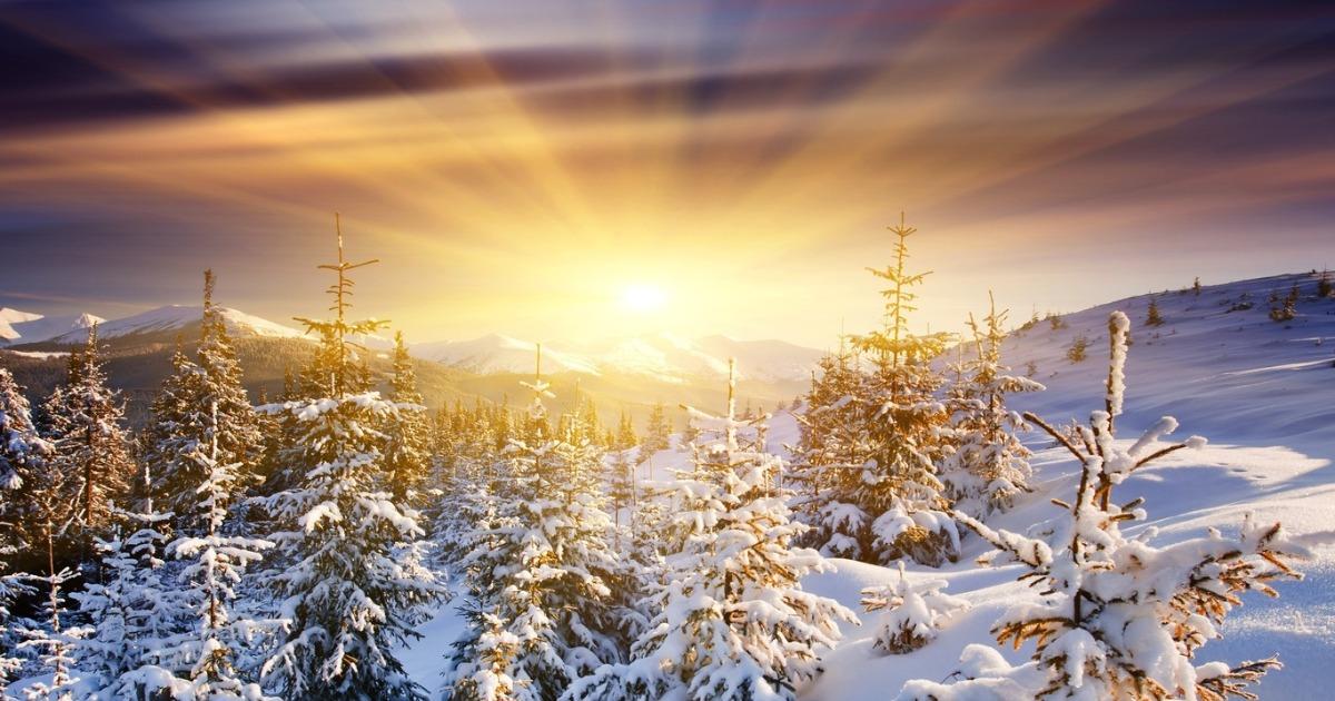 Зимнее солнцестояние: Инструкция