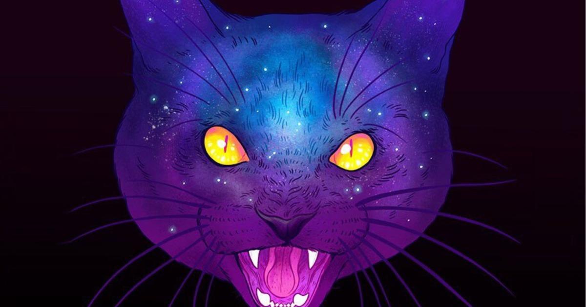 Могут ли кошки видеть «духов»?
