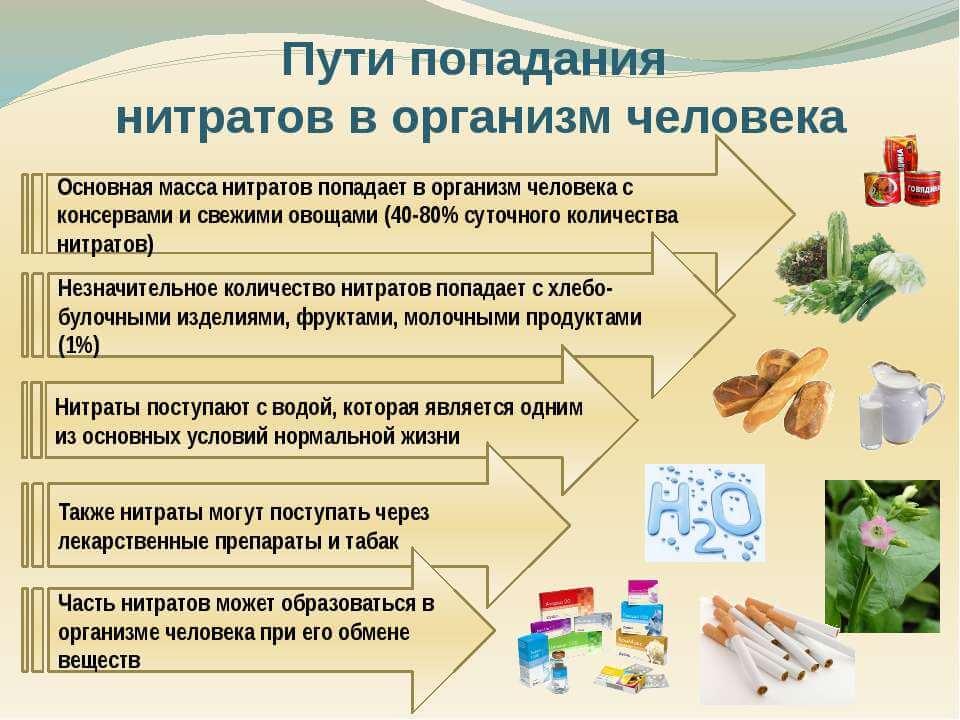 Нитраты и их вред для организма: 3 популярных мифа, в которые мы верим