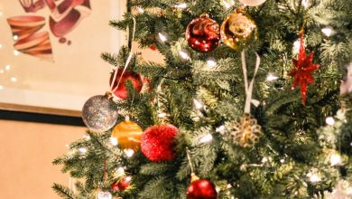 Photo of Рождество — таинство истинной любви