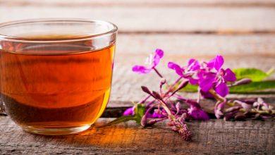 Photo of Иван-чай — настоящий русский чай