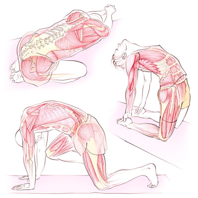 3 упражнения для декомпрессии позвоночника