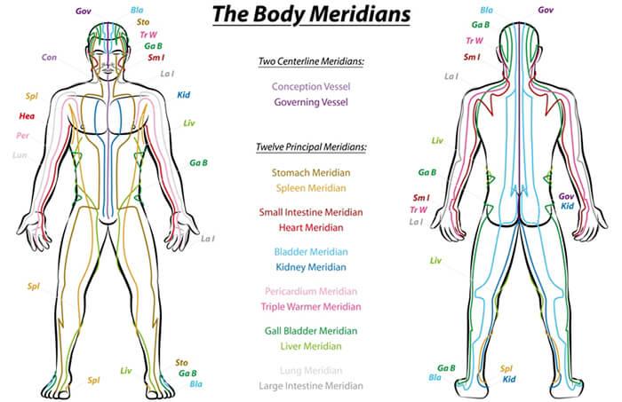 Наука доказала, что энергетические меридианы существуют