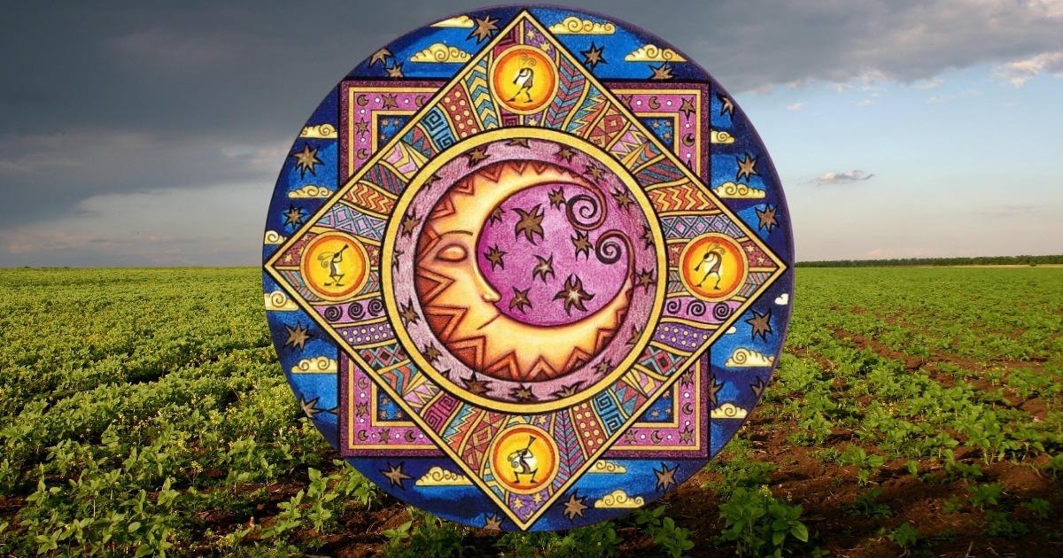Комнатные растения по знаку Зодиака: выбираем счастливый талисман