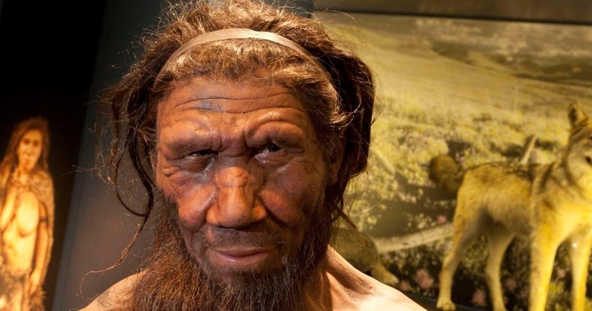 Потребление жира назвали причиной эволюции человека