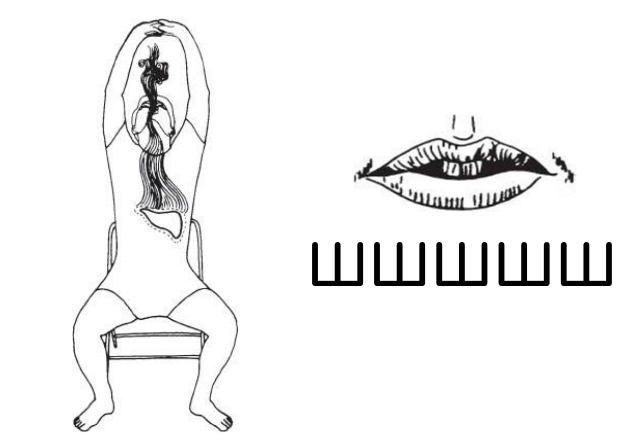 6 звуков, исцеляющих внутренние органы