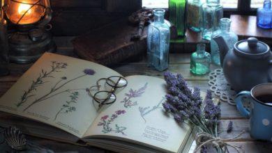 Советы сибирской травницы Лидии Суриной