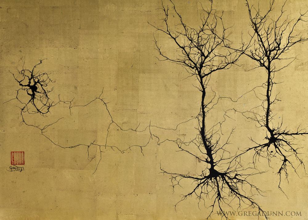 Ослепительные изображения мозга, созданные художником-неврологом